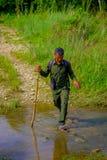 CHITWAN,尼泊尔- 2017年11月03日:使用横渡一根木的棍子的旅游指南一个水坑在森林里在Chitwan 库存图片