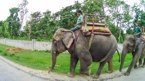 CHITWAN,尼泊尔- 2018年4月09日:大象徒步旅行队在Chitwan国家公园,尼泊尔 图库摄影