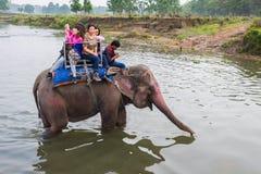 CHITWAN, NEPAL-MARCH 27 :大象徒步旅行队27日2015年在Chitwan, Ne 库存图片