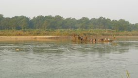 CHITWAN NATIONAL PARK, NEPAL - 10 October 2018 Tourists in canoe sailing on river. Long wooden canoe with tourists. Floating on water of river in green during stock video footage