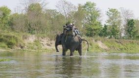 Chitwan, Nepal - em março de 2018: Safari do elefante com os turistas no parque nacional video estoque