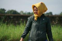 Chitwan Nepal July 20 2020 : Nepali woman   working in the farmland from Chitwan Nepal