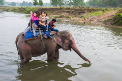 CHITWAN, NEPAL-MARCH 27: Elephant safari 27, 2015 in Chitwan, Ne Stock Images