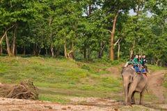 CHITWAN, NEPAL-MARCH 27: Elephant safari 27, 2015 in Chitwan, Ne Royalty Free Stock Photos