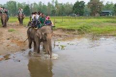 CHITWAN, NEPAL-MARCH 27: Elephant safari 27, 2015 in Chitwan, Ne Stock Images