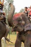 CHITWAN, NEPAL - 27. OKTOBER 2014: Leute an der Elefantsafarireise an Nationalpark Chitwan Nationalpark Chitwan war hergestelltes Lizenzfreie Stockfotos
