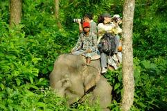 CHITWAN, np-CIRCA AUGUSTUS 2012 - toeristen die safari op olifant doen Stock Fotografie