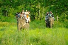 CHITWAN, np-CIRCA AUGUSTUS 2012 - toeristen die safari op olifant doen Royalty-vrije Stock Foto's
