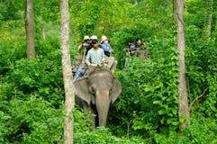 CHITWAN, np-CIRCA AUGUSTUS 2012 - toeristen die safari op olifant doen Royalty-vrije Stock Afbeeldingen