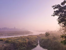 Chitwan NP in the morning Stock Photo