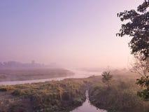 Chitwan NP pendant le matin Photo stock