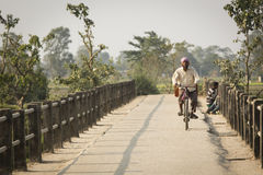 CHITWAN PARK, NEPAL - NOVEMBER 22: Unkown man on a bicycle in Ch Stock Image