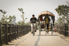 CHITWAN PARK, NEPAL - NOVEMBER 22: Unkown men on a bicycle and a Stock Photos