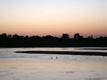 Chitwan Sunset - Nepal Stock Images