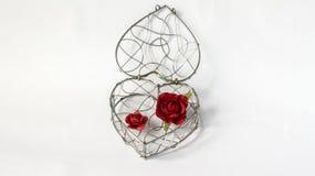 Chiuda il vostro concetto a chiave del cuore, contenitore d'acciaio della singola curva astratta nel cuore come forma con le rose Immagini Stock Libere da Diritti