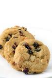 Biscotti del mirtillo e della cioccolata bianca Fotografia Stock