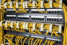 Chiuda su dei cavi gialli della rete collegati al commutatore Fotografia Stock