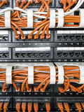 Chiuda su dei cavi gialli della rete collegati al commutatore Immagine Stock Libera da Diritti