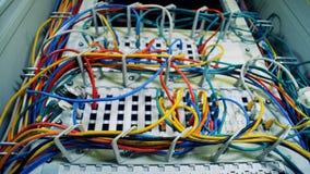Chiuda su dei cavi multicolori inseriti i server video d archivio