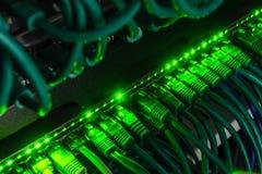 Chiuda su dei cavi verdi della rete collegati al commutatore che emette luce nello scuro Immagini Stock