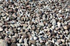 Chiuda su dei ciottoli e delle pietre grigi Immagini Stock Libere da Diritti