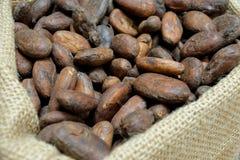 Chiuda su dei fagioli tostati del cacao fotografia stock