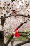 Chiuda su dei fiori dell'albero di sakura con il bozu giapponese di teru di teru della bambola della pioggia fotografie stock