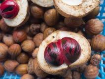 Chiuda su dei frutti della noce moscata con macis Fotografia Stock Libera da Diritti