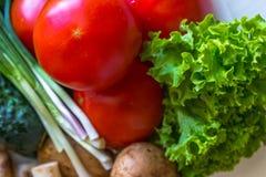 Chiuda su dei funghi e dei pomodori dell'aneto dei pomodori Immagini Stock