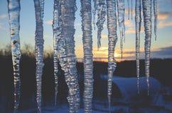 Chiuda su dei ghiaccioli su un fondo del cielo dell'inverno del tramonto immagini stock