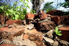 Chiuda su dei mura di mattoni distrutti Fotografie Stock Libere da Diritti