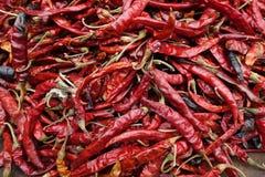 Chiuda su dei peperoncini rossi rossi secchi immagini stock libere da diritti