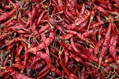 Chiuda su dei peperoncini rossi rossi secchi immagini stock