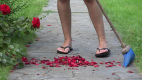 Chiuda su dei petali rosa caduti scopa femminile sul percorso in parco 4K video d archivio