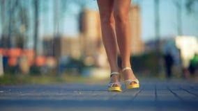 Chiuda su dei piedi delle giovani donne che camminano sulla via archivi video