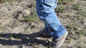 Chiuda su dei piedi di toodlers che stanno e che camminano sulla sabbia e sull'erba archivi video
