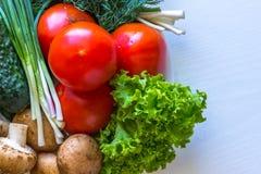 Chiuda su dei pomodori e dell'aneto con i funghi Fotografie Stock Libere da Diritti