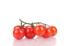 Chiuda su dei pomodori freschi Fotografia Stock