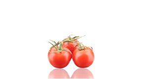 Chiuda su dei pomodori freschi Immagini Stock