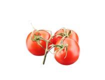 Chiuda su dei pomodori freschi Immagine Stock
