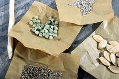 Chiuda su dei semi di verdure Immagine Stock