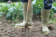 Chiuda su del campo dell'azienda agricola di Working In Organic dell'agricoltore Fotografie Stock Libere da Diritti
