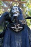 Chiuda su del corvo di scheletro in albero Fotografie Stock