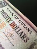 Chiuda su del dollaro della Guyana Fotografia Stock Libera da Diritti
