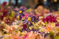Chiuda su del fiore porpora falso sul fondo della sfuocatura Fotografie Stock