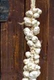 Chiuda su del mazzo di tempo di raccolto bianco di allium sativum dell'aglio asciugandosi sul fondo di legno Attaccatura da asciu Fotografia Stock