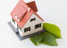 Chiuda su del modello e delle foglie verdi della casa Fotografia Stock Libera da Diritti