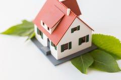 Chiuda su del modello e delle foglie verdi della casa Immagine Stock