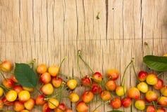 Chiuda su del mucchio delle ciliege gialle mature con i gambi Ampia raccolta delle ciliege gialle fresche Priorità bassa matura d Immagine Stock