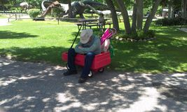 Chiuda su del nonno tuckered fuori in vagone dei bambini Fotografia Stock Libera da Diritti